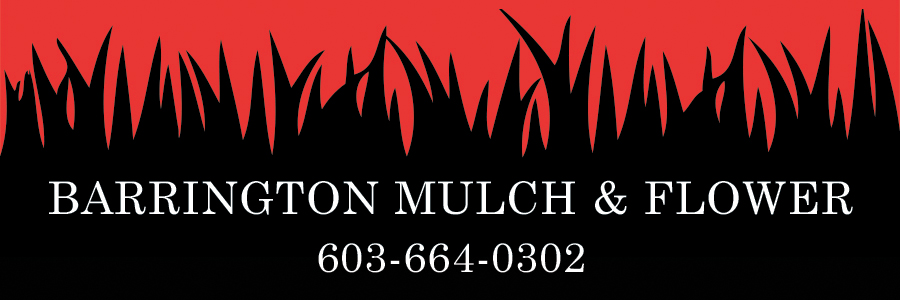 Barrington Mulch